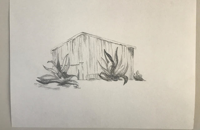 Elizabeth Griffith  'Corrugated Tin', created in 2017, Original Drawing Pen.