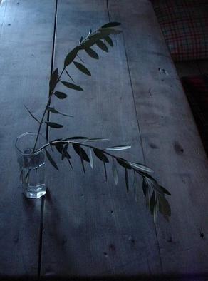 Emilio Merlina Artwork  serenity, 2006  serenity, Inspirational