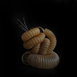 Emilio Merlina: 'in the time coils', 2011 Mixed Media Sculpture, Fantasy.