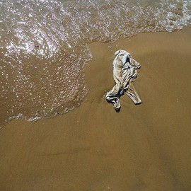 Emilio Merlina: 'it was not me the One walking on the water', 2012 Color Photograph, Fantasy.