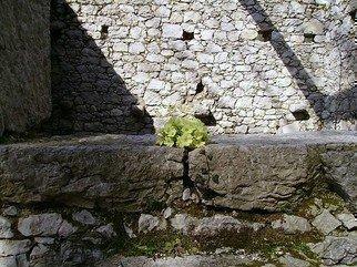 Emilio Merlina Artwork springtime, 2007 springtime, Inspirational