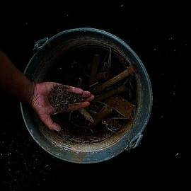 Emilio Merlina: 'thief of magic powder', 2010 Color Photograph, Representational. Artist Description:  digital photo  ...