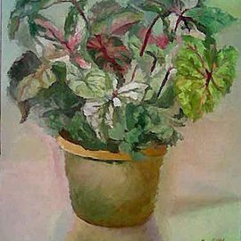 Maria Teresa Fernandes: 'Alves Collection', 1972 Oil Painting, nature. Artist Description:  hues and shades of greens give plans on a flat canvas ...