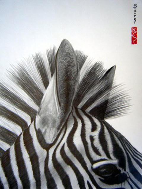 Eric Stavros  'Zebra Close Up', created in 2009, Original Drawing Pencil.