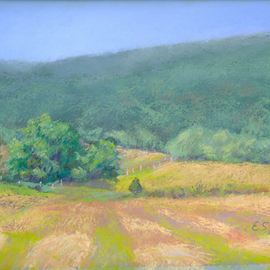 E S Desanna Artwork Just Mown, 2008 Pastel, Landscape