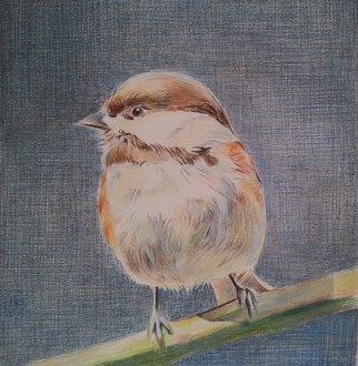 Ralitsa Veleva Artwork Biird, 2015 Biird, undecided