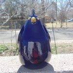 dark blue quail By Esta Bain