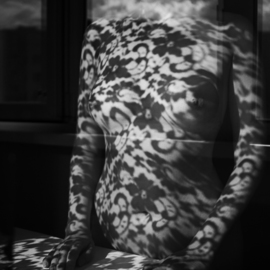 Mikhail Faletkin: 'lace 12', 2016 Black and White Photograph, Nudes. Artist Description: In this nude photos with interesting lacy shadows and reflections, lace with clouds is merging . . .  or the clouds turn into an openwork pattern of shadows, but can the lace on the contrary soar into the cloudsLimited signed edition 1 of 30...