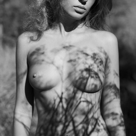 Mikhail Faletkin: 'shadow of summer', 2014 Black and White Photograph, Nudes. Artist Description: In this summer nude portrait with shadows of wild flowers I wanted to show some light sadness over a rapidly flying summer . .Limited signed edition 1 of 30...