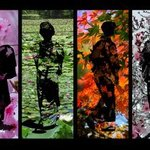 the four seasons of japan By Evelyn Espinoza