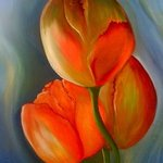 tulips By Fanny Diaz