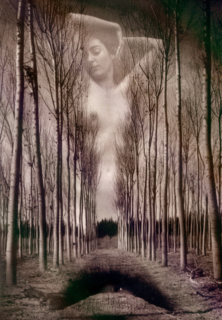 Itzhak ben arieh artwork in the wood original photography black and white fantasy art