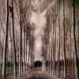 Itzhak Ben Arieh: 'IN THE WOOD', 1992 Black and White Photograph, Fantasy. Artist Description:  PHOTOMONTAGEFANTASTIC PHOTOGRAPHY ...