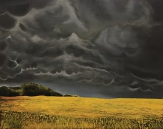 Farah Ravazadeh: 'dark sky', 2016 Oil Painting, Landscape. Artist Description: Dark clouds covering the sky upon a field in need of sun. Oil painting is framed. Measurements include frame...
