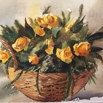 yellow roses By Farah Ravazadeh