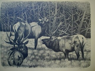 Bob Filbey: 'Trio I', 1990 Lithograph, Animals.  elk woods antlers meadow   ...