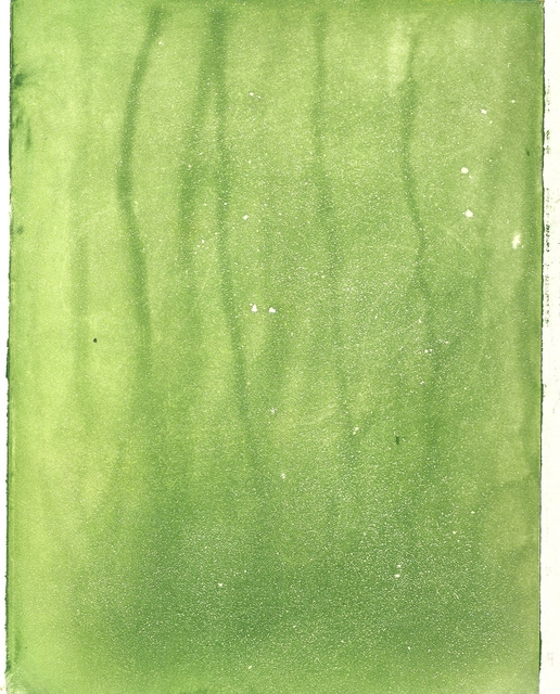 Frederick Jones  'Green', created in 2005, Original Printmaking Etching.