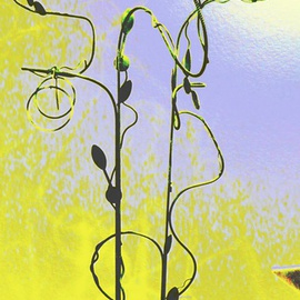 Menthe Wells Artwork Steel Vine, 2011 Steel Sculpture, Abstract