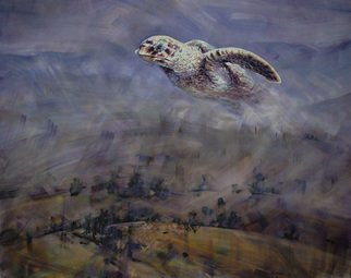 Gabriel Bodnariu: 'the turtle', 2016 Oil Painting, Figurative. Artist Description: Sky, Turtle, Flying, Art, Hils , art, gallery...