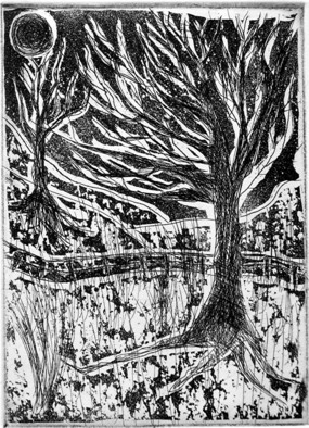 Jerry Di Falco Artwork Forbidden Drive in Snow, Philadelphia, 2009 Etching, Landscape