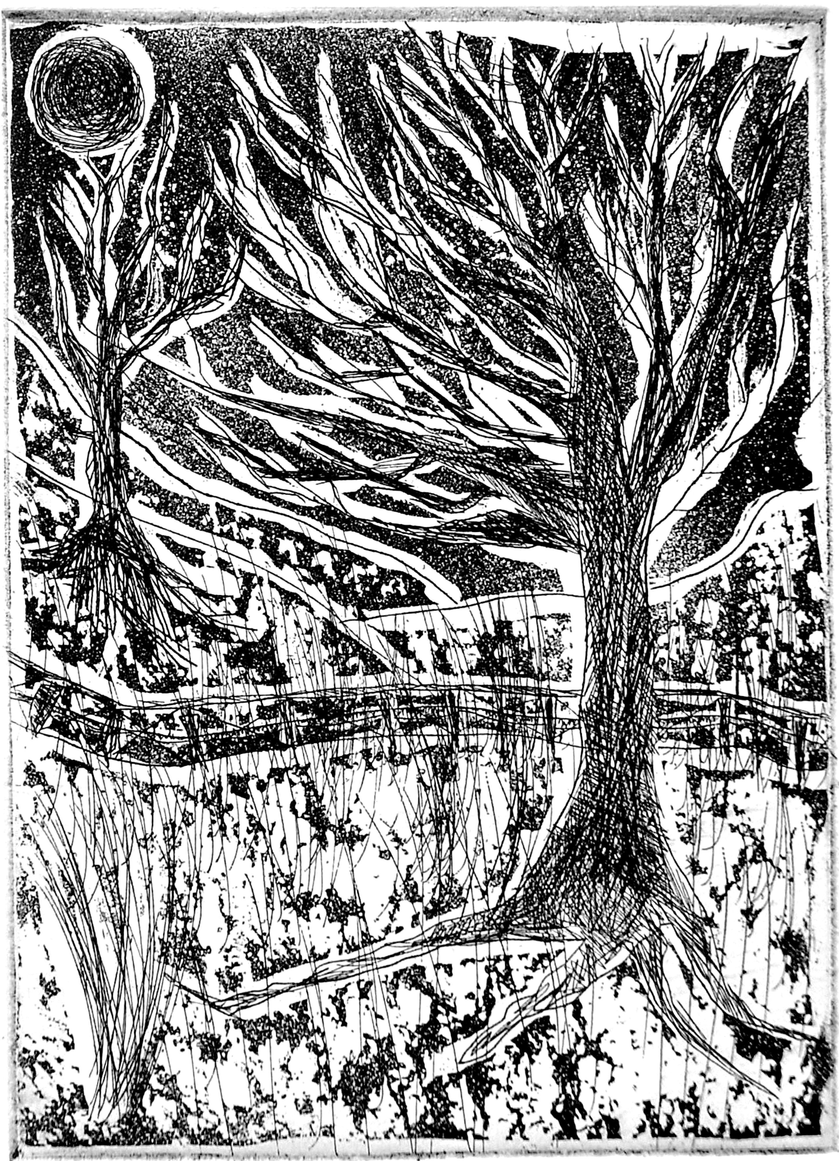 Jerry  Di Falco: 'Forbidden Drive in Snow', 2009 Etching, Trees. I hand printed and published this edition at The Center for Works on Paper in Philadelphia, Pennsylvania, USA.  Please note that this etching is shipped to the collector as is, in other words. . .  without a frame or mat.  This not only keeps the price reasonable, but also allows the collector ...