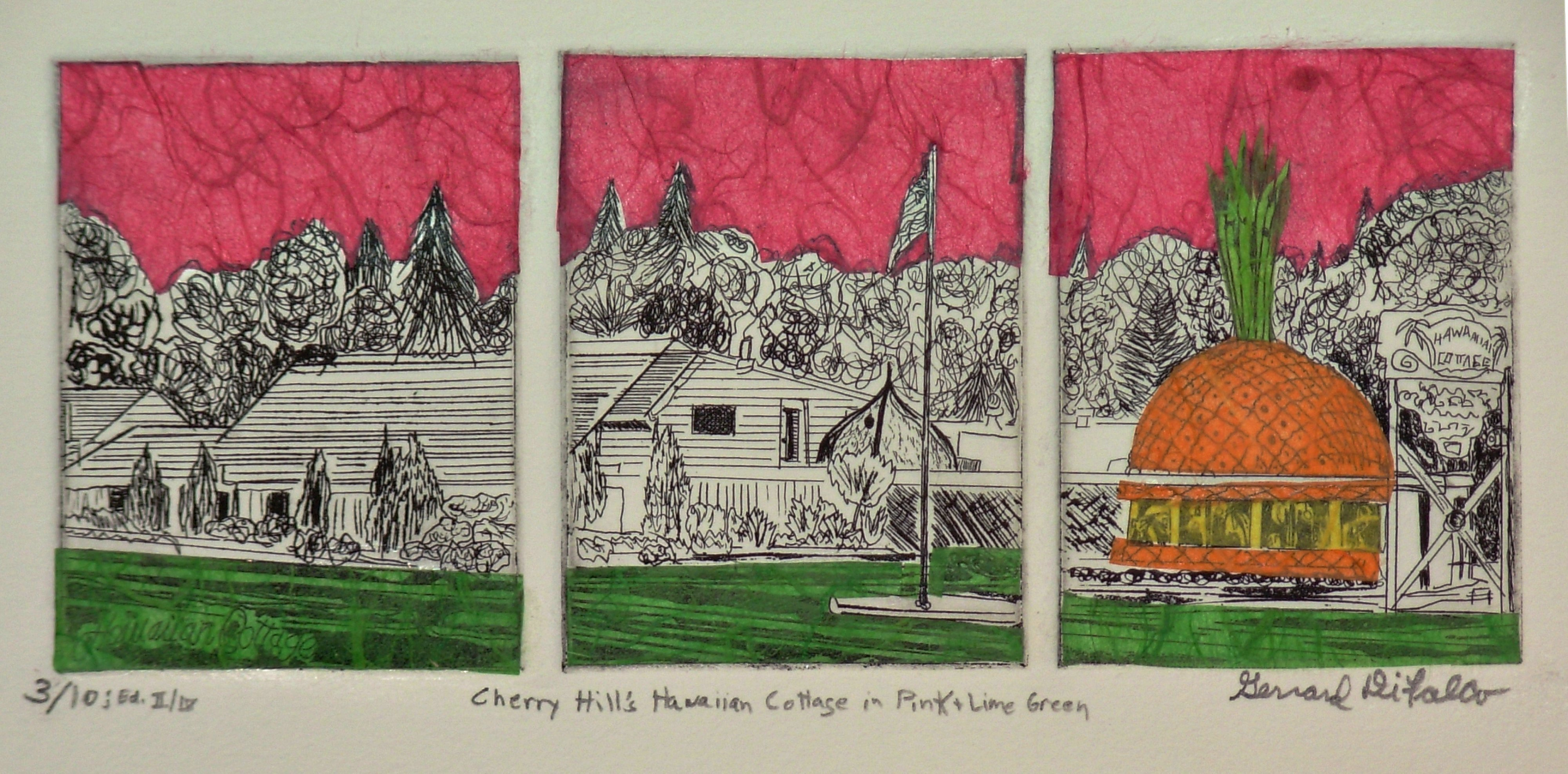 Jerry  Di Falco: 'HAWAIIAN COTTAGE IN PINK', 2014 Etching, Americana. This ETCHING includes the printmaking techniques of intaglio, drypoint, Chine colle, and aquatint. I executed the print in black oil- based printing ink on Rives BFK white paper. I used three separate zinc plates, lined horizontally on the press, to create one printed image. The work also uses three different ...