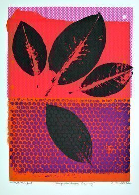 Jerry  Di Falco: 'magnolia sugar dawning', 2017 Monoprint, Botanical. Artist Description: This multiple layered monoprint is executed in water- base printing inks on Rives BFK paper and represents a new experiment by the artist in color and geometric nature. Work is sold without backing, mat, or frameand, the paper size is eighteen by twenty two inches. Work is shipped ...