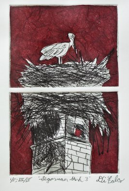 Jerry  Di Falco: 'stork in segovia three', 2018 Etching, Birds. THIS ORIGINAL DIFALCO ETCHING IS SOLD ALREADY FRAMED UNDER GLASS AND MATTED IN AN ACID FREE, WHITE MAT.  THE 14 INCH HIGH BY 11 INCH WIDE FRAME IS COMPOSED OF BLACK PAINTED WOOD, AND IS WIRED AND READY TO HANG.  Note that the detail image is actually print number three ...