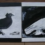black and white peace doves By Godwin Constantine