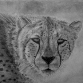 Andrew Dyson Artwork Spotted You, 2010 Pencil Drawing, Wildlife