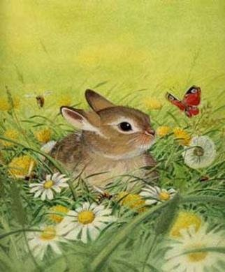 Animals Illustration by Bernhard Oberdieck titled: Little rabbit, created in 2005
