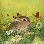 Little Rabbit, Bernhard Oberdieck