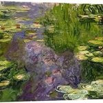 waterlillies By Andrew Giffen
