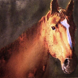 Portrait Of A Brown Stallion, Ivan Grozdanovski