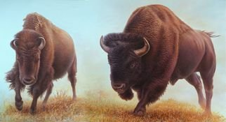 Hans Droog: 'buffaloes', 2020 Oil Painting, Animals. Yellowstone Park two panel scene with two buffaloes. ...