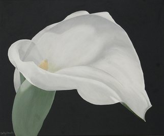 Cathy Savels: 'Arum Lily Painting White Flower on Gray Background Floral Botanical Wall Art', 2016 Acrylic Painting, Botanical. Artist Description:  A really sculptural flower, I could not resist painting this arum lily. In soft gray, white and green, this is a painting that will fit any interior decor.TITLE Arum LilySIZE 55 x 46cms 22 x 18Acrylic on CanvasThe sides of the canvas are painted ...