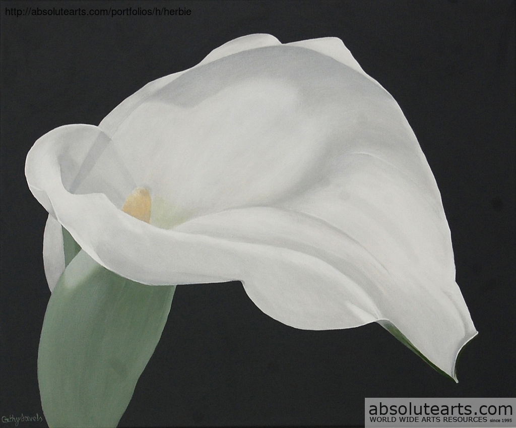 Cathy Savels Artwork Arum Lily Painting White Flower On Gray