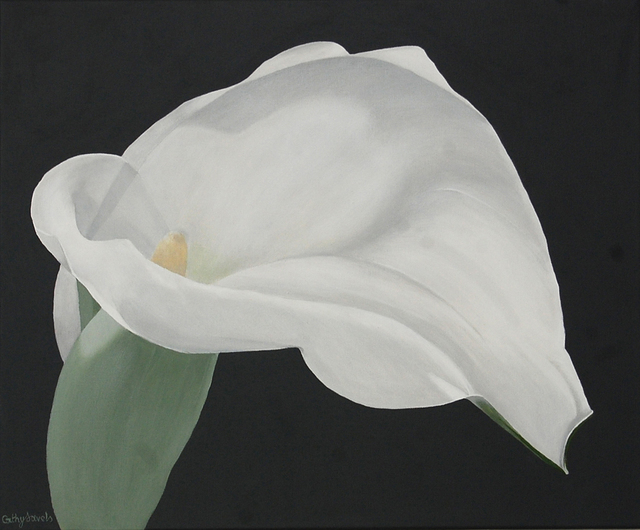 Cathy savels artwork arum lily painting white flower on gray cathy savels arum lily painting white flower on gray background floral botanical wall art 2016 mightylinksfo