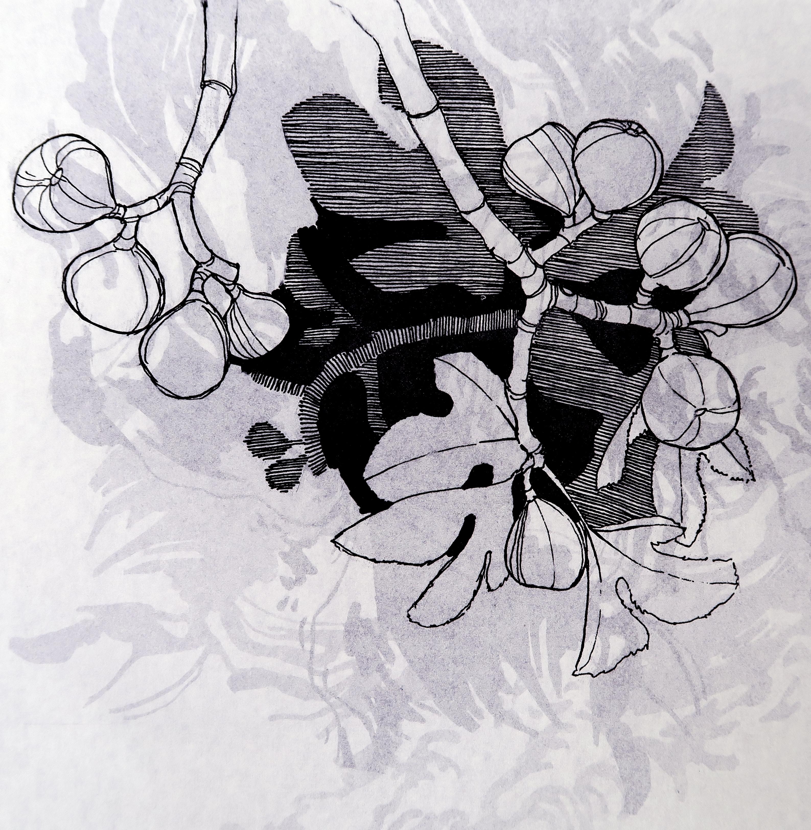 Hilary pollock artwork untitled lithograph 1 original printmaking lithography figurative art