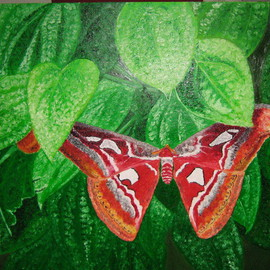 Hnin Aye: 'cool leaves hot  butterfly', 2009 Oil Painting, Still Life. Artist Description:  One day I found a butterfly on the leaves of a black pepper plant. The scene arouse my heart to make a painting. ...