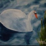 Swan By Barbara Honsberger