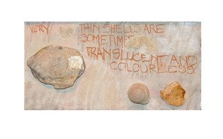 Collage by Hope Brooks titled: Shells and Stones revisited panel 1, created in 2008