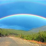 Gaspe Double Rainbow By Harvey Horowitz