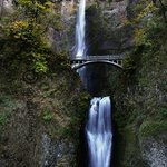 Multnomah Falls By Harvey Horowitz