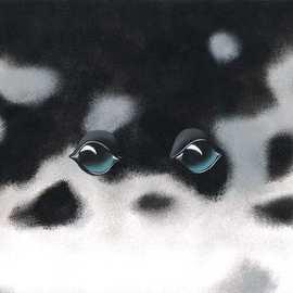 Eyes: Harp Seal