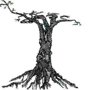 Dina M Wilks Artwork Tree, 2008 Tree, Nature