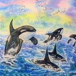 a flock of killer whales By Igor Moshkin