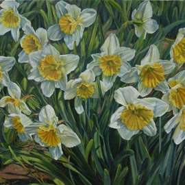 Laurie Ihlenfield: 'Daffodils', 2008 Oil Painting, Floral.