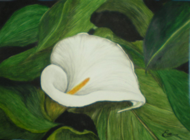 Eve Co  'Calla Lily In Leaves', created in 2010, Original Painting Oil.