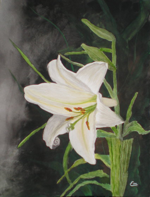 Eve Co  'Easter Lily', created in 2010, Original Painting Oil.